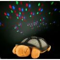 Svíticí želva s projekcí