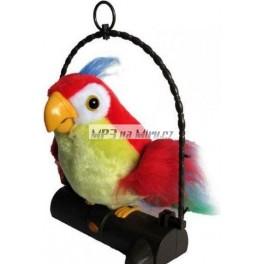 Opakujicí a pohyblivý papoušek