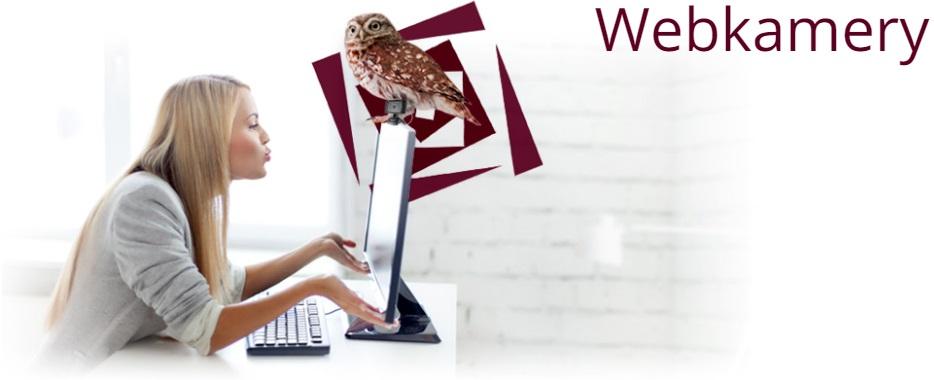 Webkamery k notebookům či stolním počítačům.
